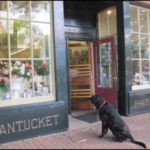 Nantucket Pharmacy